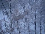 【乌克兰项目】基辅学生的雪景写意